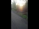 Утренняя прогулка Рей и Рона
