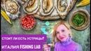 Монтекатини Терме Италия (Montecatini Terme Italy): устрицы ресторан Fishing Lab Авиамания