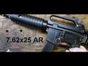 7 62x25 AR carbine