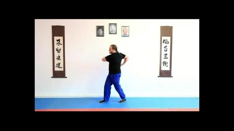 Full Circle Wing Chun - Biu Jee.