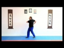Full Circle Wing Chun - Biu Jee.