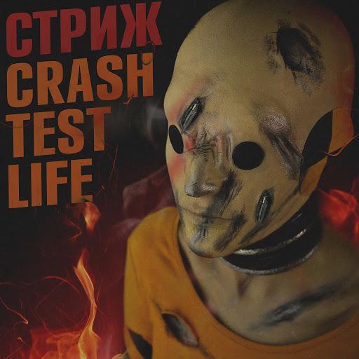 Стриж альбом Crash Test Life