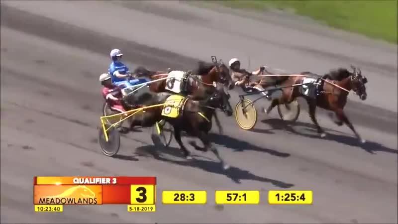 7yo mare Hannelore Hanover won 3rd Q