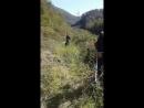 паха с коляном в краснодаре