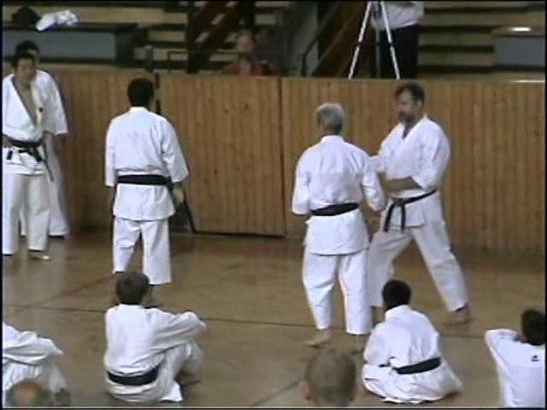 IJKA Edzőtábor 2009, Sadashige Kato (2. Rész)