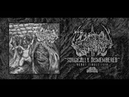 DEVOUR THE IGNORANT SURGICALLY DISMEMBERED DEBUT SINGLE 2018 SW EXCLUSIVE