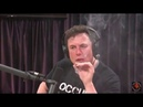 Илон Маск курит марихуану в прямом эфире