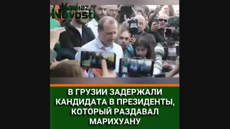 кандидат конопляный в депутаты [MDK DAGESTAN]