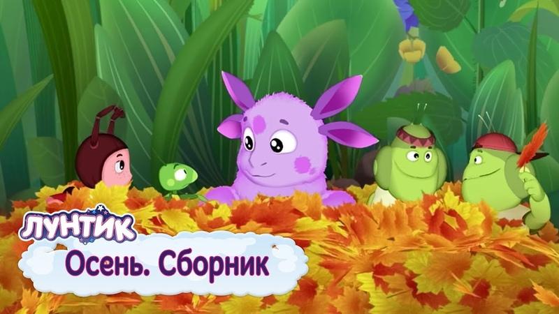 Осень 🍁 Лунтик 🌧 Сборник мультфильмов 2018