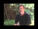 Terence Mckenna Novelty Theory explained in seven minutes