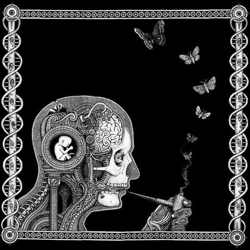 DSK альбом Mundo Incoherente