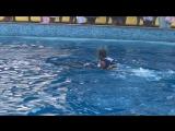 Диана и дельфин. Дельфинотерапия)))