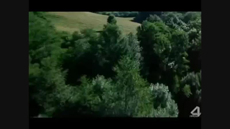 Косари на лугу.mp4