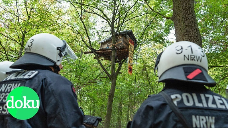 Bäume oder Braunkohle Der Kampf um den Hambacher Forst WDR Doku