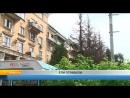 Рыбинск - 40 | Ели отравили