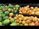 Доминикана манго 2018