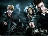 Пятый Гарри Поттер и Орден Феникса (2007)