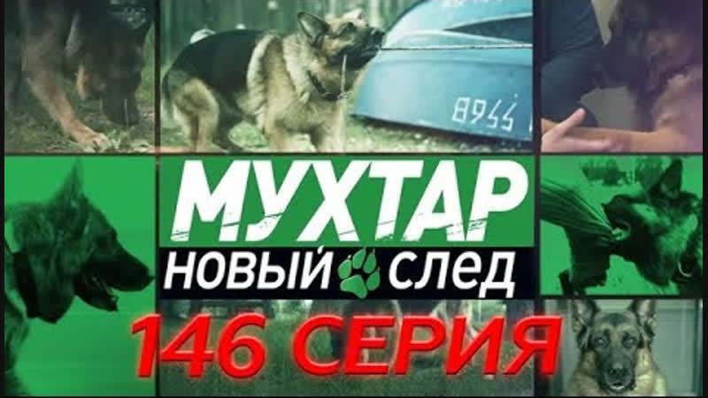 Мухтар Новый след 145 серия HD эфир от 25 02 2019 Медведь