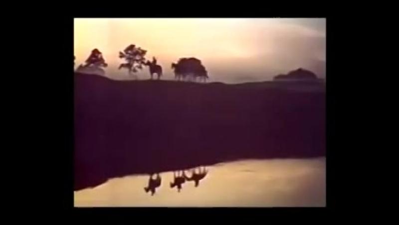 Грустные ивы склонились к пруду. ( кадры из фильма Государственная граница)