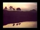 Грустные ивы склонились к пруду кадры из фильма Государственная граница