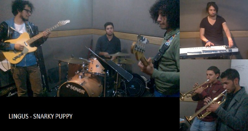 Lingus - Snarky Puppy (cover) Gabriel Adames