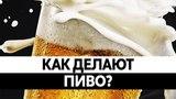 Как ДЕЛАЮТ ПИВО? Польза и вред пива. Вся правда!