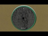 Nick Beringer - Impulse - B2