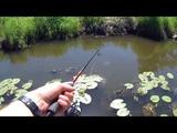 Рыбалка в ручье на спиннинг. Как всегда с хорошим уловом