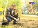 Продолжается озеленение Мончегорска. Новые деревья и кустарники высажены ещё на двух общественных территориях.