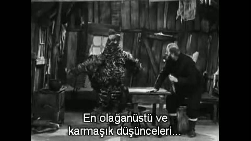 Charlie Chaplinin Yaşamı Ve Sanatı - Charlie (2003)