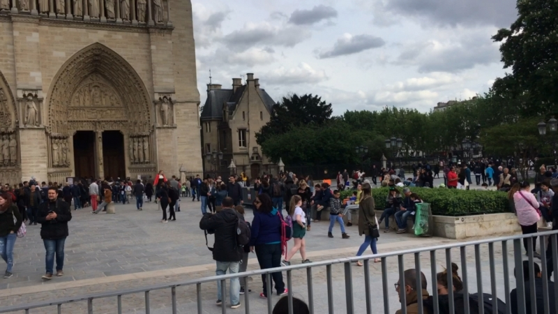 Собор Парижской Богоматери 28 04 2018