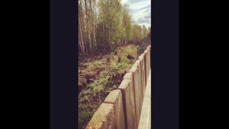 В Среднеуральске массово рубят лес