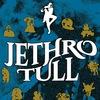 JETHRO TULL (UK)    29.04.18    Санкт-Петербург