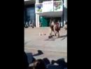 В Украине спецназовцы показывали детям как правильно перерезать горло человеку.