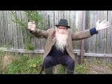 Психология Дед Архимед. Песенка про жопу. Благодарен за репосты(1)