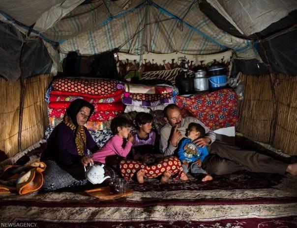 Кочевые племена Ирана.