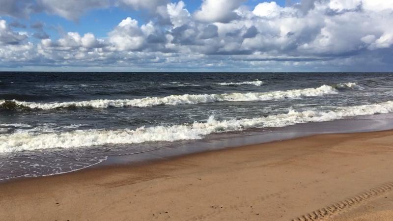 Пляж в Сосновом Бору ЛО