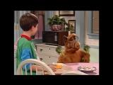 Alf Quote Season 4 Episode 5_Брокколи