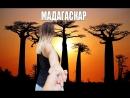 Лемуры на Мадагаскаре! Бежим на звук!