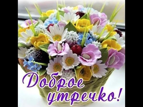 Красивое пожелание с Добрым Утром Доброго Утра Beautiful wish with Good Morning Good Morning