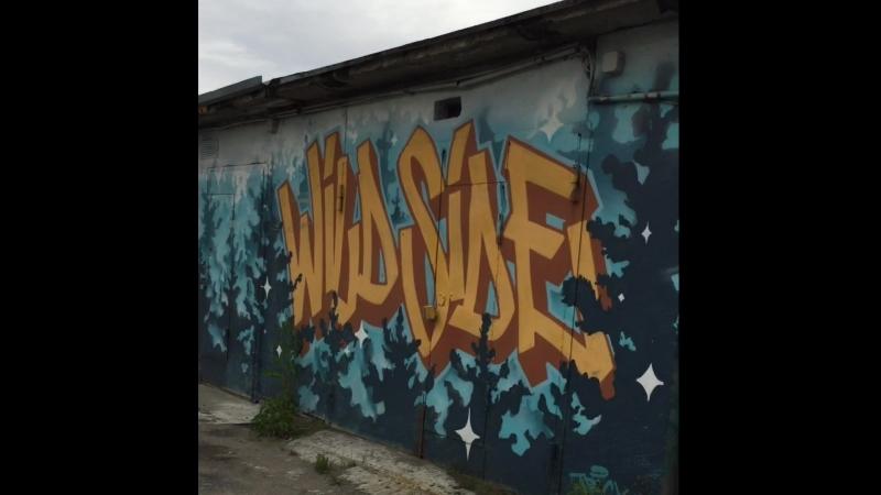Тонировка Мурманск . Автогородок ул. Гвардейская 14, г. Мурманск