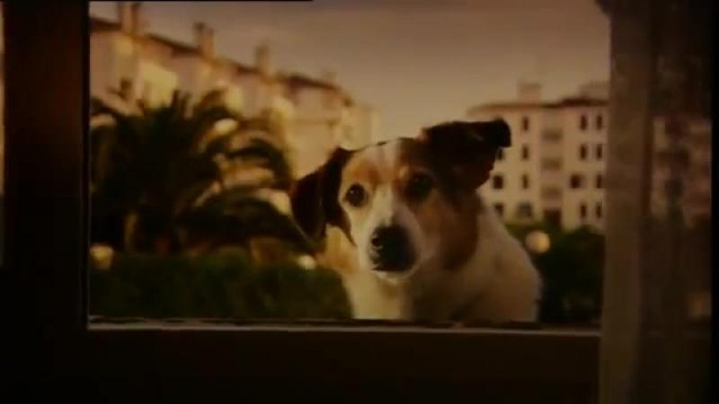 Реклама Club 18-30 - Doggy Style (2002, UK) PORSCHENЪ