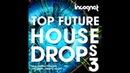 Top Future House Drops Vol.3 Samples [HEXAGON, SPINNIN] Free Samples