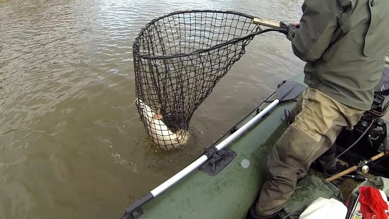 Северные злые щуки! (часть 2). Утро начинается не с кофе. Big nothern pike fishing. DF 31