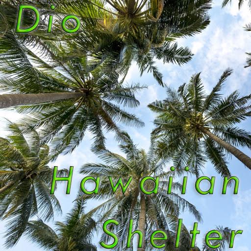 Dio альбом Hawaiian Shelter