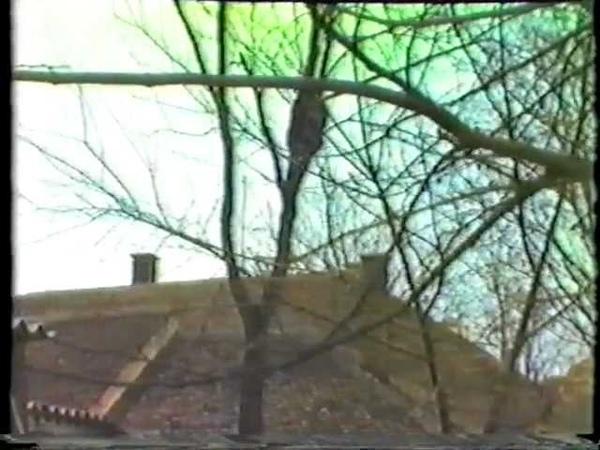 Legenda Beo Zoo Vrta - Simpanza Sami - II bekstvo 23. 02. 1988.