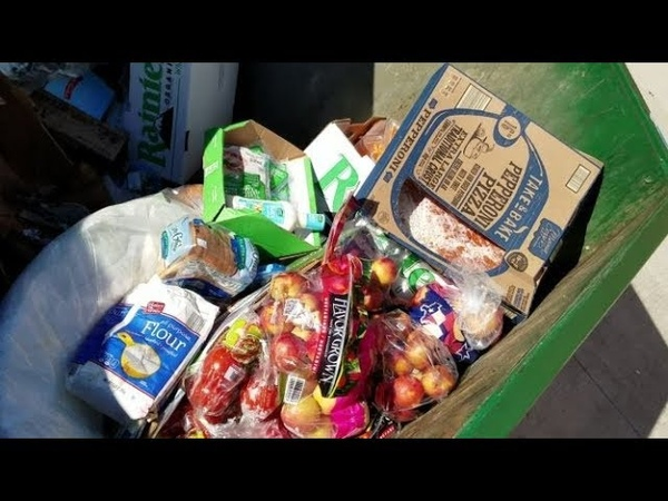 DUMPSTER DIVING ALDI DAILY VIDEO 43