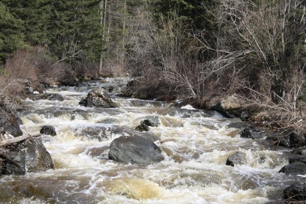 Река Чибитка в районе Красных ворот.