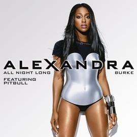 Alexandra Burke альбом All Night Long