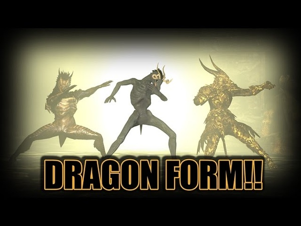 ThePruld Dark souls dragon form